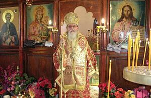 митрополит Йоаникий