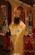 Знеполски епископ Николай